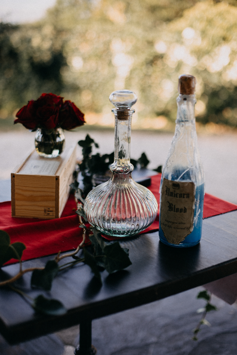 Photographe mariage seance photo reportage wedding photographer destination domaine des saints peres montagnole sorcier wood foret dark harry potter boho moody-27