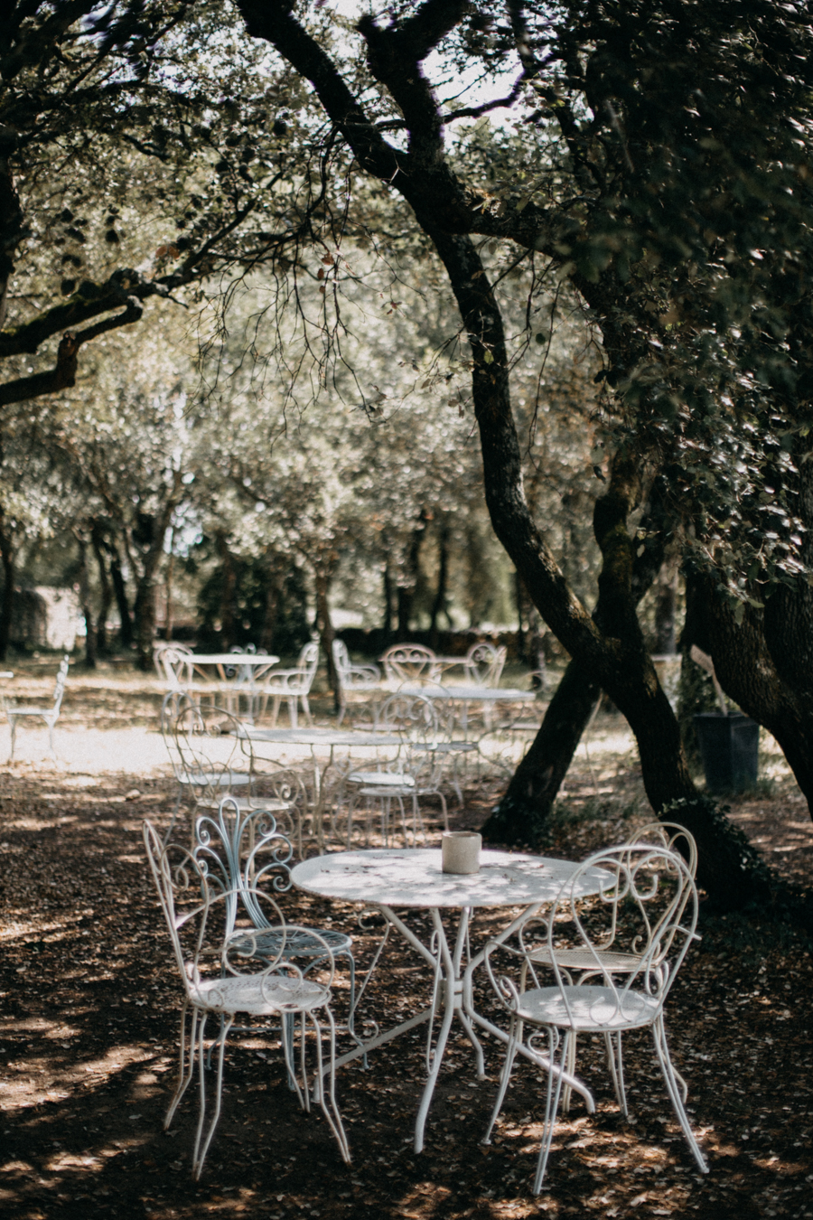 Photographe mariage seance photo wedding reportage couple love session domaine de patras provence-4